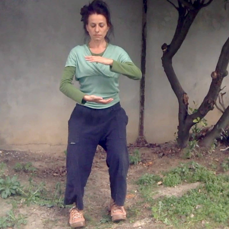 Pendant le confinement: séances corporelles               en vidéo
